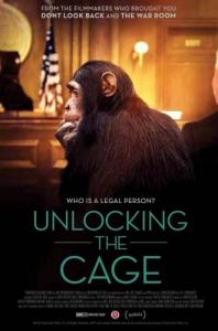 unlocking the cage