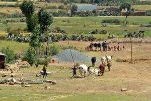 JV3 rural ethiopia